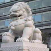 中式石狮子花岗岩(图片