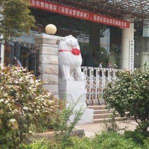 花岗岩石狮子石雕狮子价格(图片)