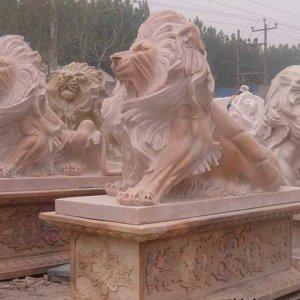 一群晚霞红石狮子(图片)