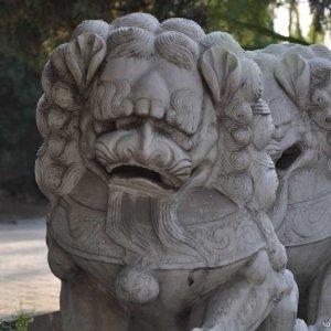 镇宅石雕狮子价格(图片)