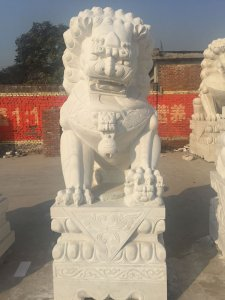 2.5米汉白玉石雕狮子图片展示