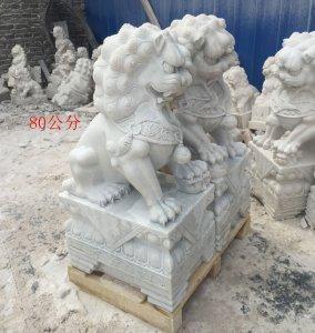 高0.8米石雕狮子侧面图片 汉白玉(03)
